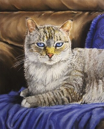 cat portraits in pastel